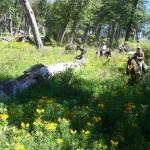 macdermotts argentina2