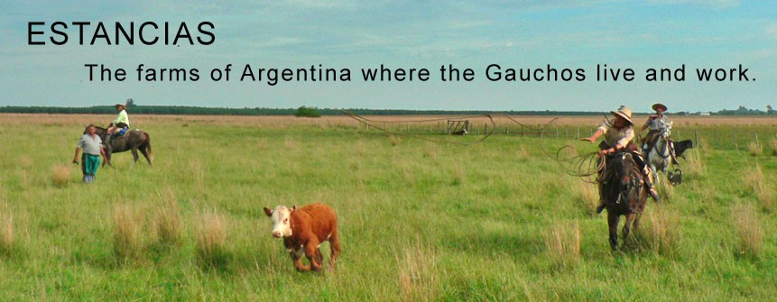 https://macdermottsargentina.tur.ar/estancias-in-argentina/