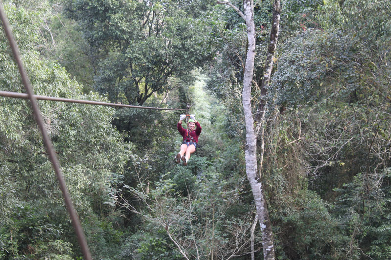 Iguazu jungle zip line