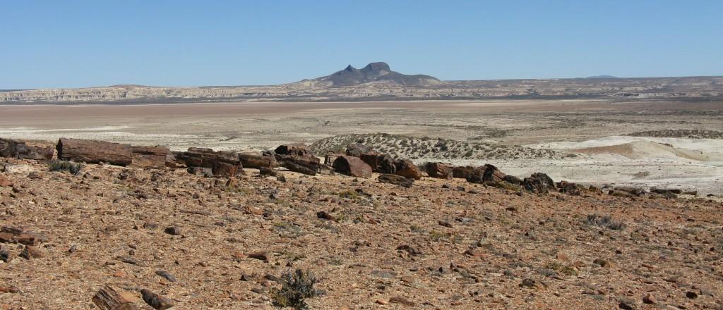 The Patagonian Desert