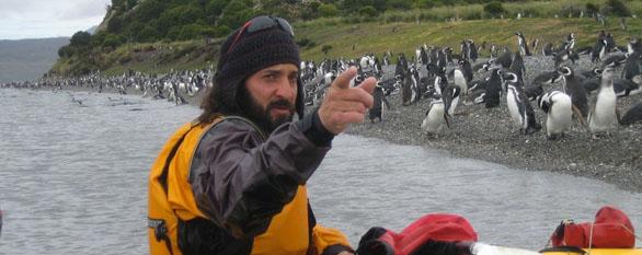Kayaking in Tierra del Fuego